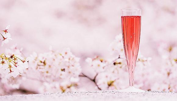 日本樱花季从星巴克到百事可乐都开始贩卖樱花味 但到底樱花是什么味呢?