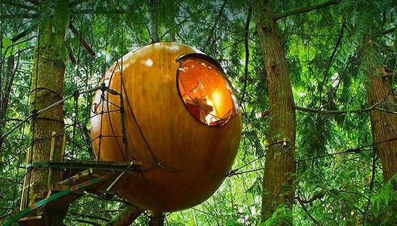 这么酷的树屋,下次度假一定要去