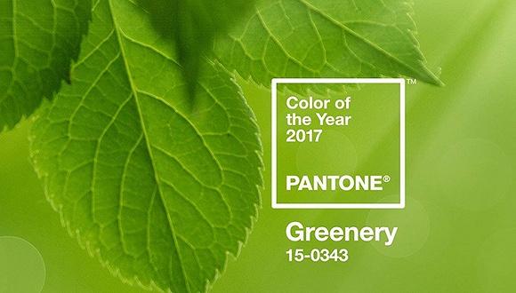 """彩通发布2017年度色 但为什么有人说这个颜色叫""""美元绿""""?"""