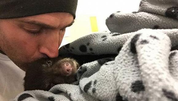 差点进监狱,这位登山客营救了一只熊宝宝