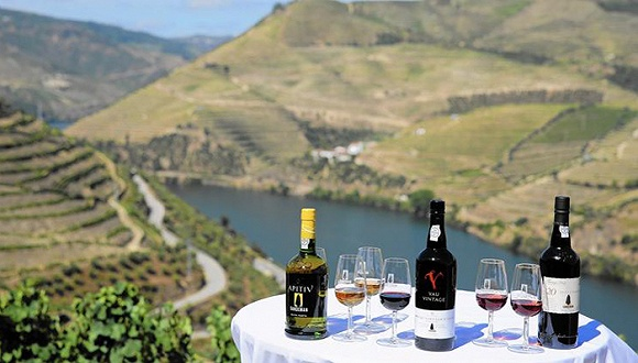 独特的葡萄酒产区游轮巡航之旅