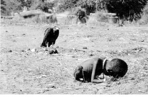 凯文·卡特《饥饿的苏丹》
