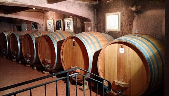 从缅甸到葡萄牙,我们收集了11个鲜为人知却在近几年出产上乘品质葡萄酒的葡萄园