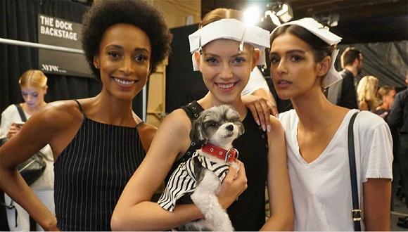 正在进行的纽约时装周 有六件奇怪的事情博足了眼球